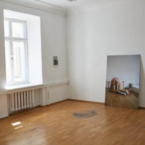 TASE '18 lõputööde näitus. Cloe Jancis ''Metamorfoos''