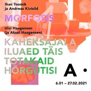 plakat_jaanuar_haagensen_toomik_kivisild-IN-2