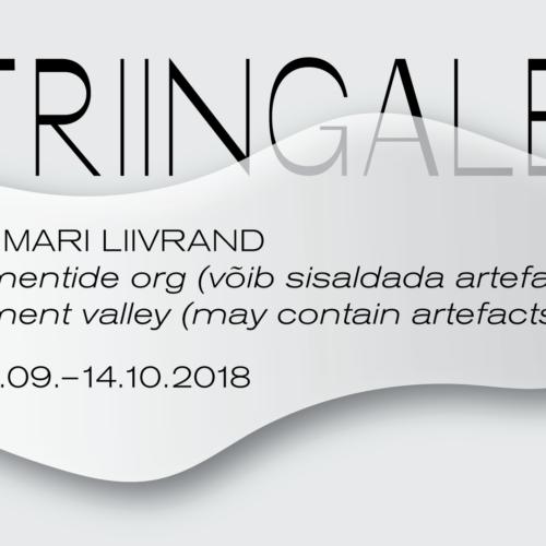vitriingalerii_fb_event_anna_mari_liivrand9