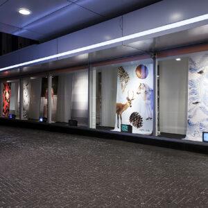 Graafilise disaini tudengite kujundatud vaateaknad Tallinna Kaubamajale, 2018. Juhendaja: Sandra Nuut.